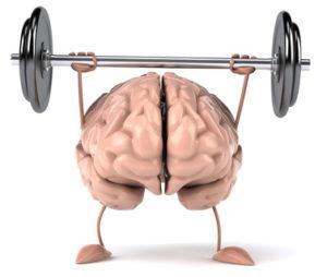 Cerveau fort